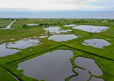 An aerial view of coastal marshes in Cape Cod